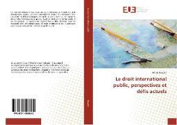 Cover-Bild zu Le droit international public, perspectives et défis actuels von Bogdan-A