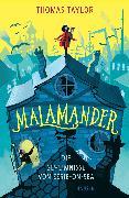 Cover-Bild zu Malamander - Die Geheimnisse von Eerie-on-Sea von Taylor, Thomas