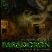 Cover-Bild zu Paradoxon (Audio Download) von Liebold, Norman