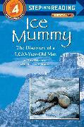Cover-Bild zu Ice Mummy von Dubowski, Mark