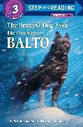 Cover-Bild zu The Bravest Dog Ever von Standiford, Natalie