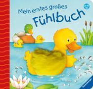 Cover-Bild zu Mein erstes großes Fühlbuch von Grimm, Sandra