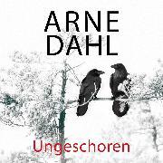 Cover-Bild zu Ungeschoren (A-Team 6) (Audio Download) von Dahl, Arne