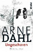 Cover-Bild zu Ungeschoren von Dahl, Arne