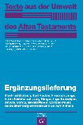 Cover-Bild zu Ergänzungslieferung (eBook) von Junge, Friedrich