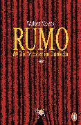 Cover-Bild zu Rumo & die Wunder im Dunkeln (eBook) von Moers, Walter