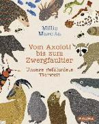 Cover-Bild zu Vom Axolotl zum Zwergfaultier von Marotta, Millie
