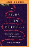 Cover-Bild zu A River in Darkness: One Man's Escape from North Korea von Ishikawa, Masaji