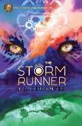 Cover-Bild zu Cervantes, J. C.: The Storm Runner