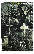 Cover-Bild zu Intruder In The Dust (eBook) von Faulkner, William