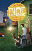 Cover-Bild zu Fünf Freunde und der Zauberer Wu von Blyton, Enid