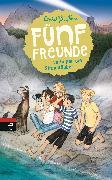 Cover-Bild zu Fünf Freunde verfolgen die Strandräuber (eBook) von Blyton, Enid