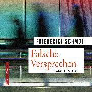 Cover-Bild zu Falsche Versprechen (Audio Download) von Schmöe, Friederike