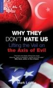 Cover-Bild zu Levine, Mark: Why They Don't Hate Us (eBook)