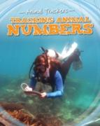 Cover-Bild zu Tracking Animal Numbers (eBook) von Jackson, Tom