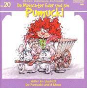 Cover-Bild zu Pumuckl: Pumuckl 20. Uushilf / Muus