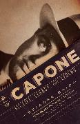 Cover-Bild zu Bair, Deirdre: Al Capone