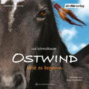 Cover-Bild zu Ostwind 7 - Wie es begann von Schmidbauer, Lea