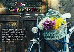Cover-Bild zu Zum Geburtstag