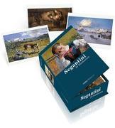 Cover-Bild zu Postkartenbox Giovanni Segantini