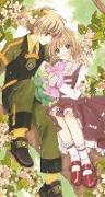 Cover-Bild zu CLAMP: Cardcaptor Sakura Collector's Edition 4