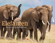 Cover-Bild zu Elefanten Kalender 2021 von Ackermann Kunstverlag (Hrsg.)