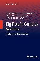 Cover-Bild zu Big Data in Complex Systems von Abawajy, Jemal H. (Hrsg.)