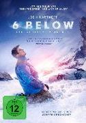 Cover-Bild zu Turner, Madison: 6 Below - Verschollen im Schnee