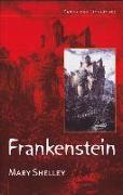 Cover-Bild zu Shelley, Mary: Frankenstein. Mit Materialien