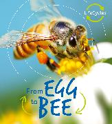 Cover-Bild zu Lifecycles: Egg to Bee von de la Bedoyere, Camilla