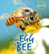 Cover-Bild zu Lifecycles: Egg to Bee (eBook) von De La Bedoyere, Camilla