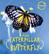 Cover-Bild zu Lifecycles: Caterpillar to Butterfly (eBook) von De La Bedoyere, Camilla