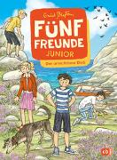 Cover-Bild zu Blyton, Enid: Fünf Freunde JUNIOR - Der unsichtbare Dieb