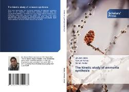 Cover-Bild zu The kinetic study of ammonia synthesis von Habib, Ghulam