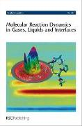Cover-Bild zu Molecular Reaction Dynamics in Gases, Liquids and Interfaces von Chemistry, Royal Society of (Gespielt)