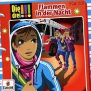 Cover-Bild zu Die drei !!! 63: Flammen in der Nacht von Vogel, Maja von
