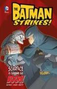 Cover-Bild zu Matheny, Bill: Batman Strikes! Pack B of 4