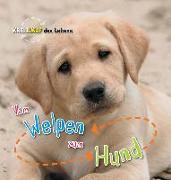 Cover-Bild zu Vom Welpen zum Hund. Kreislauf des Lebens von de la Bédoyère, Camilla