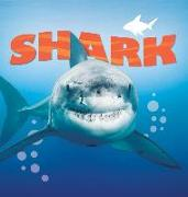 Cover-Bild zu Shark von De La Bedoyere, Camilla