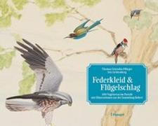 Cover-Bild zu Federkleid & Flügelschlag von Griesohn-Pflieger, Thomas