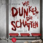 Cover-Bild zu Wie dunkel die Schatten (Audio Download) von Kölpin, Regine