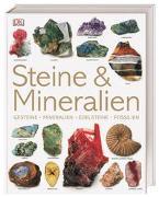 Cover-Bild zu Steine & Mineralien von Bonewitz, Ronald L