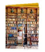Cover-Bild zu At Home with Books Wallet Notecards