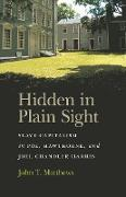 Cover-Bild zu Hidden in Plain Sight (eBook) von Matthews, John T.
