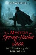 Cover-Bild zu The Mystery of Spring-Heeled Jack (eBook) von Matthews, John