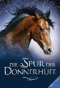 Cover-Bild zu Die Spur der Donnerhufe, Band 1-3: Flammenschlucht, Sternenfeuer, Nebelberge (eBook) von Lasky, Kathryn