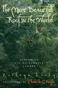 Cover-Bild zu Most Beautiful Roof in the World (eBook) von Lasky, Kathryn