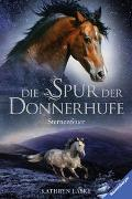 Cover-Bild zu Die Spur der Donnerhufe, Band 2: Sternenfeuer von Lasky, Kathryn