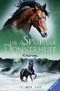 Cover-Bild zu Die Spur der Donnerhufe, Band 3: Nebelberge (eBook) von Lasky, Kathryn