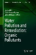 Cover-Bild zu Water Pollution and Remediation: Organic Pollutants (eBook) von Lichtfouse, Eric (Hrsg.)